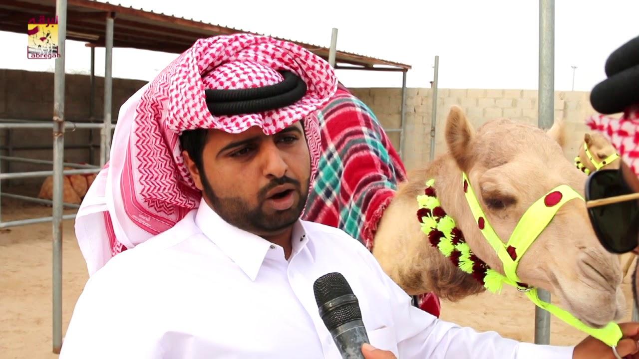 لقاء مع فهيد بن علي العفراء الشوط الرئيسي للحقايق بكار المفتوح مساء ٣-٢-٢٠١٩