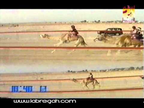 أنجاز ملك_سمو الشيخ محمد بن راشد بن سعيد آل مكتوم سيف سمو الأمير 6-4-2004-ت ١٧:٤٩:٠١