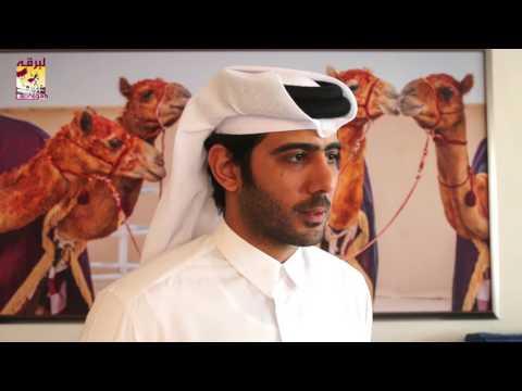 لقاء مع ناصر بن عبدالله المسند الفائز بالشلفة الفضية للجذاع بكار مهرجان تحدي قطر ٢٦-٤-٢٠١٧
