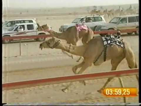 سلهودة لـ محمد سلطان مرخان الكتبي – مهرجان درهام التحدي 20/5/2008 – جذاع بكار قبائل 9:24:45