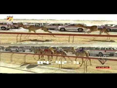 مكيف لـ صالح حمد القمرا المري (بندقية اللقايا قعدان المفتوح) مهرجان ختامي المرموم ٢٧-٢-٢٠٠٨ التوقيت ٧:٣٨:٥