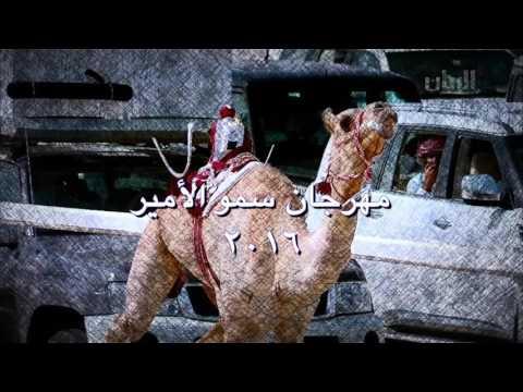 فيديو عن انجازات هجن الشحانية في موسم ٢٠١٥-٢٠١٦